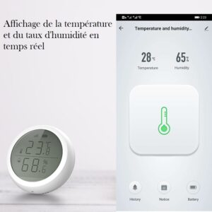 Thermometre hygrometre connecté en wifi